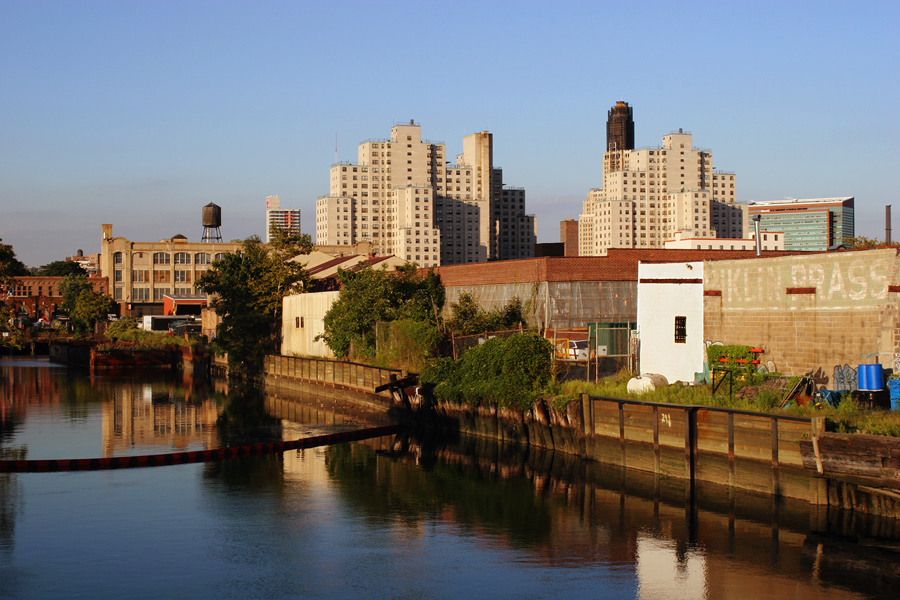 Gowanus Autumn Standard View