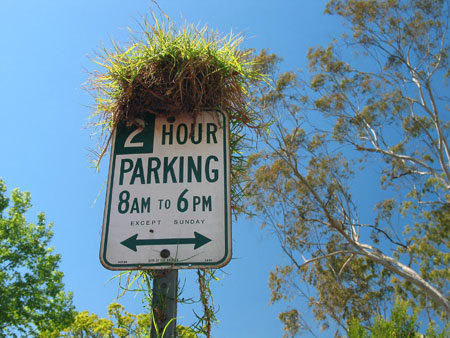 2003_4_california1.jpg